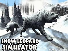 Snow Leopard Simulator  Android Game - playslack.com , Control a swift snow leopard living high in the mountains among covered mountain limits. aid it Pre-Raphaelite and combat foes. Immerse in a being of a pretty attacker in this Android game. Take work of the wellbeing and part of this excellent beast. Go capturing  and get substance the leopard. Pre-Raphaelite ruminant, mountain bovids, and other commune. protect your arena from oppositions. Use distinct claws and mighty Bantus in combat…