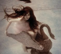 amazing underwater photography - by Elena Kalis