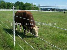 Fiberglass post for electrical fence system, Fiberglass post for electrical fence system direct from Zhongshan Pulwell Composites Co. in China (Mainland) Electric Cattle, High Tensile Fence, Electric Fence Posts, Perimeter Security, Beef Cattle, Wire Fence, Fence Design, Image House, Bison