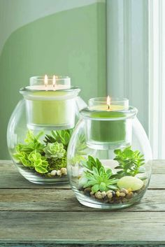 Create you very own mini terrarium in our Clearly Creative Escential Jar and Glo. - Partylite - Create you very own mini terrarium in our Clearly Creative Escential Jar and GloLite Jar holders fo - Mini Terrarium, Decor Terrarium, Succulent Terrarium, Terrarium Ideas, Candle Lanterns, Diy Candles, Candle Jars, Decorative Candles, Candle Holders