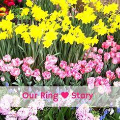 Smores & Sundresses ~ Our Ring Story