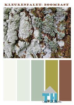 kleurenpalet boombast