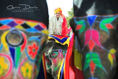 Jaipur - Rajasthan, India | Cosmin Danila Photography - I See Beautiful People  The Elephant Festival is celebrated each year on the occasion of Holi: