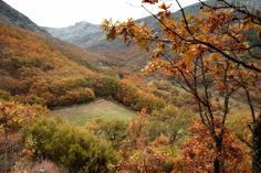 Paisajes de otoño en el Valle del Jerte http://soprodevaje.blogspot.com.es/ OTOÑADA