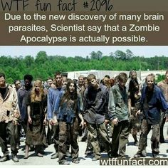 As someone honestly a little afraid of the zombie apocalypse...I didn't need to know this.