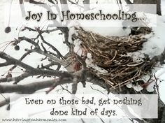 What to do on bad homeschool days. There is more to homeschooling than just what's in the planner.  From Harrington Harmonies