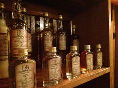 Alcateia Pub Club – Um espaço especial para você