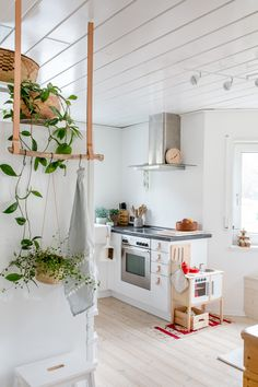 Insta Worthy Indoor Plants to Freshen Up Your Home Kitchen Decor, Decor, House Interior, Tiny House Kitchen, Home Kitchens, Home, Interior, Living Room Furniture Arrangement, Living Room Furniture