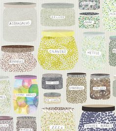 Wonder why the spices shelf in my kitchen doesn't have a little jar of cosmic bubbles in rainbow. Illustration by Ana Montiel.
