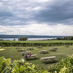 Wagner Vineyards https://www.facebook.com/JodysGuideToHomesInTheFingerLakesRegion/