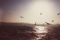 Istanbul Fine Art Travel Photography - 5x7 inch Print