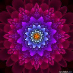 Marcelo Dalla ~ Flower of Love (mandala)