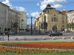 Maxted Travels with Modestine 2: Bratislava