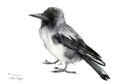 Crow Artwork, one of a kind original watercolor painting, crow painting, black and white bird art by ORIGINALONLY on Etsy