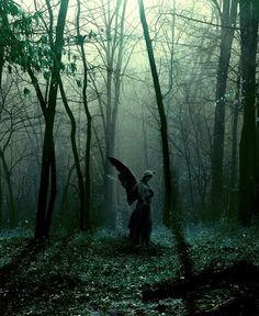 angelgreen.jpg Photo by xxo | Photobucket