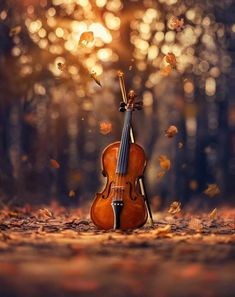 Whimsical and Dreamlike Still Life Photography by Ashraful Arefin photography dreamlike stilllife fineart toyphotography 401524123025882112 Studio Background Images, Photo Background Images, Art Background, Photo Backgrounds, Music Backgrounds, Photography Backgrounds, Autumn Photography, Still Life Photography, Whimsical Photography