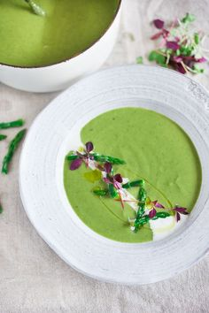A delicious recipe for Spring Asparagus Fennel Soup with Tarragon and Fennel Oil. Simple to make, full of flavor, beautifully presented. Creamy Asparagus, Asparagus Soup, Asparagus Recipe, Soup Recipes, Whole Food Recipes, Vegetarian Recipes, Healthy Spring Recipes, Healthy Food, Diet Recipes