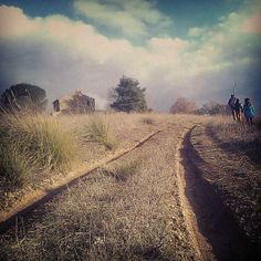 mapitout-tuscany.com LIFE IN TUSCANY: WINTER WALKS