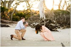 A Proposal | Driftwood Beach, Jekyll Island Georgia