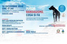 10/12 Conferenza dibattito sul #randagismo in #Puglia organizzato dalla #LegadelCane di #Putignano (BA)