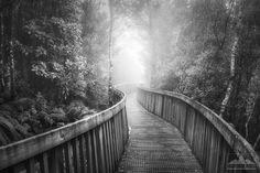 Landscape photo for sale taken by Anthony Turnham at Denniston, West Coast, New Zealand.