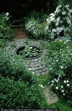 This done with blue or white plumbago, surrounded freecycle pavers or cheap concrete bags, tuck under backyard oaks or front former fire pit