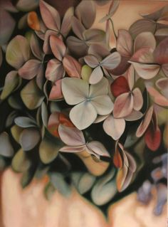 Hydrangea by Leanne Thomas
