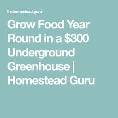 Grow Food Year Round in a $300 Underground Greenhouse | Homestead Guru