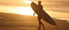 Surf Holidays photo