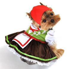 Two piece Alpine Girl Dog Costume, includes lime green corset top with flower appliques, apron dress with attached lace petticoat, and adjustable drawstring handkerchief headpiece. Easy to wear front closure. Pair it with our Alpine Boy sold separately.