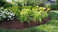 Making little mounds for the flower beds makes for visually beautiful landscaping