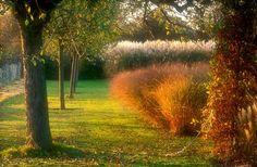 Le Jardin Plume    Photograph © Le Jardin Plume