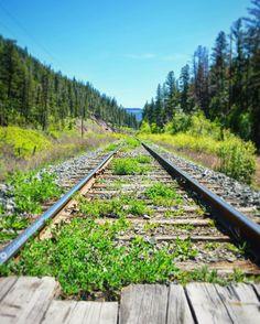 Spotted railway tracks on the way to Kelowna! #railwaytracks #explorebc #artofvisuals #moodygrams #canadiancreatives #justgoshoot #optoutside #exploremore #getoutstayout #agameoftones #createexplore #stayandwander #thatpnwlife #pnwbc #createcommune #pnw #thecreatorclass #adventureoflife #exploretocreate #imagesofcanada #wanderlust #globalcapture #hellobc #lifeofadventure #arcteryx #wildernessculture #visualsoflife #landscape