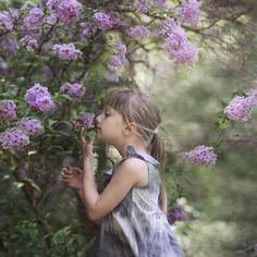 this reminds me of how i loved the lilac tree we had outside our first house in WV days...i miss that tree...