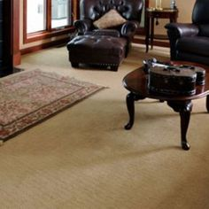 20 Best Wall To Wall Carpet Ideas Images Wall Carpet