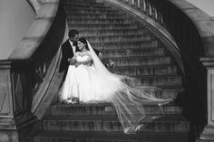 Sesja ślubna Zamość