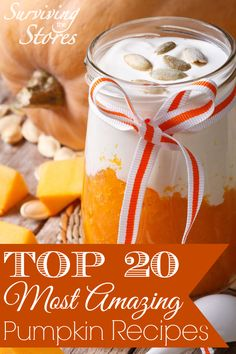 Top 20 Most Amazing Pumpkin Recipes + How To Make Pumpkin Puree! - Surviving The Stores™ Thanksgiving Recipes, Fall Recipes, Holiday Recipes, Great Recipes, Favorite Recipes, Pumpkin Spice, Canned Pumpkin, Pumpkin Puree, Pumpkin Pumpkin