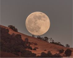 June 23, 2013 super moon rising near Mount Diablo State park in Walnut, CA, USA