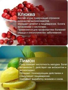 13177773_634606593353498_1618645704275326701_n.jpg (438×578)
