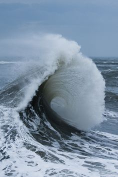 I love the curl of the wave in this photo. The ocean is so powerful and I love seeing pictures that capture that.