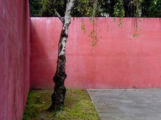 on something, onsomething Fernando Távora Meneses, Design Research, Exterior, Fairy Dust, Terrace Garden, Garden Gates, Alter, Creative Design, Wonderland