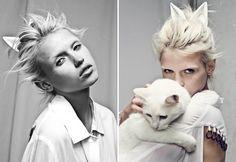 // white cat