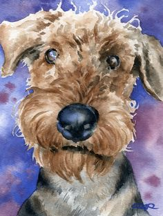 AIREDALE TERRIER Dog Watercolor Art Print Signed by Artist DJ Rogers. $12.50, via Etsy.