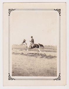 PROFESSIONAL SHOW HORSE EQUESTRIAN RIDER POSE FINE ANTIQUE SNAPSHOT PHOTOGRAPH