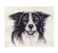 BORDER COLLIE dog ~ Full counted cross stitch kit, all materials