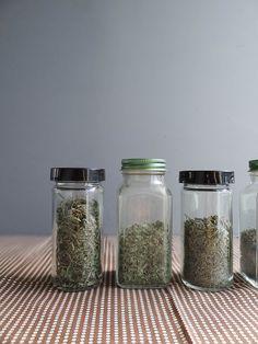 diy kitchen series: drying herbs