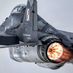 Fuerza Aérea Polaca MiG-29G