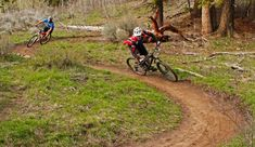 HOW TO CHOOSE THE RIGHT MOUNTAIN BIKE | Teton Gravity Research