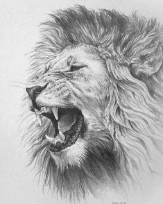 Tattoos, lion tattoos for men, tatou animal, lion design, lion tattoo desig Bull Tattoos, Animal Tattoos, Body Art Tattoos, Horse Tattoos, Wing Tattoos, Sleeve Tattoos, Lion Tattoo Design, Lion Design, Tattoo Designs