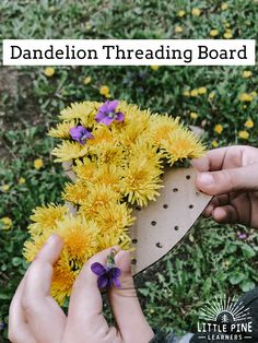 Reuse pieces of cardboard and create these adorable threading boards for dandelions or wildflowers. This is a great way to work on shape recognition, hand-eye coordination and other fine motor skills for preschoolers! Nature Activities, Summer Activities For Kids, Preschool Crafts, Toddler Activities, Preschool Activities, Outdoor Activities, Art For Kids, Crafts For Kids, Theme Nature